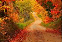 My Michigan! / by Penny Wisney