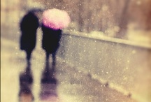 rainy days & mondays... / by Lee Hauser