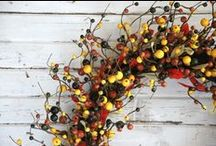 Fall Inspirations / by Bella Marie