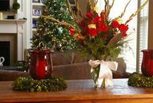 Christmas Entertaining / by Bella Marie