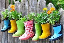 Flowers & Gardens / by Nancy Ball