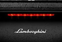 Lamborghini / by Paolo Masucci