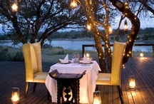 Outdoor Dining / by Sydney Rae Schiller