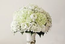 Wedding flowers  / by Cathy Ash