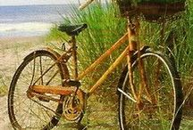 Transport - Bicycles / by Monica Bourne