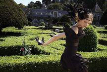 { le jardin } / gardens & European gardens & estate gardening.  / by S H E L L I E