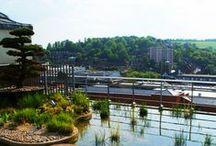 Water & Rooftops - Water & daken / Water Rooftops - Water daken / by dakwaarde - roofvalue