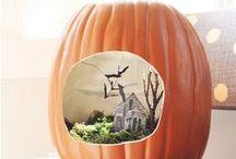 Halloween  / by Heather Underwood