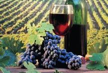 Wine... / Everything wine...  / by Carol Friese