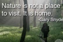 Gaia Wisdom / Wise sayings.... / by Cedar House Inn & Yurts