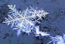 Snowflake Bentley / by Sherri Allen