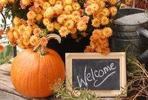Autumn / Thanksgiving and autumn decorations :) / by Vanessa Alaniz