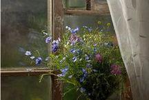 Home Decor / by Green Gramma