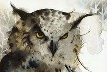 Animals. 03/08, Búhos y Rapaces / Plumas de depredadores como búhos... águilas, buitres, pinguinos, etc. / Feathers predators like owls ... eagles, vultures, penguins, etc. / by Francisco de Javier