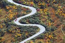 Road Snakes / Roads that inspire us to ride our bikes.   / by Skiis & Biikes