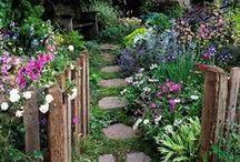 Gardening * Flowers * Plants / by Pamela Eileen