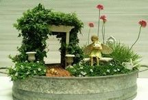 Miniature Fairy Gardens & other tiny gardens! / by Lorraine Terry