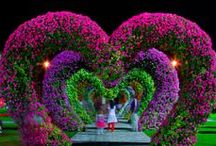 HEARTS TO LOVE / by Cindy Holmes