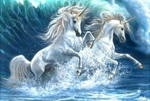 Animals ~ Unicorns and Pegasus / by Carroll Wilson