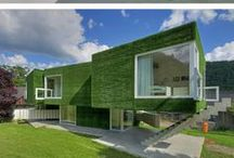 vertical garden and green walls / vertical garden and green walls vertikální zahrady a zelené stěny    Please follow the limit pin 10 day from all my boards.Thank you and Happy pinning / by Helena Ciompová
