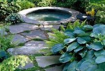 Outdoor spaces / by Launi Johnson