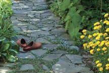 Garden Hardscape / by Launi Johnson