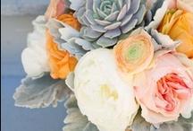 Color Inspiration / by Phil Stefani Signature Events