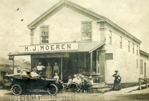 Local History / Big thanks to the Novi Historical Commission's funding, guidance, and involvement in several of the projects pictured on this page. / by Novi Public Library