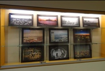 Monthly Displays / by Novi Public Library