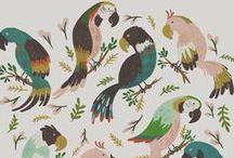 Prints & Patterns / by Jewel Kade