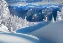 Winter's Wonderland Whispers / by Prayer Whisperer