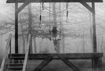 Killing Me Softly / by Ann Zarro