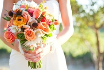 Spring Wedding Ideas / Some gorgeous colourful ideas for Spring Weddings / by Pink Frosting