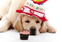 Happy Birthday Dog Friends / by Lori Baur