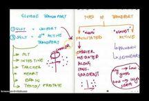 MCAT Content & Premed Life / #MCAT : #Biology, #OrganicChemistry, #GeneralChemistry, #Physics andl #Mcat2015 information for #premeds. @scrubwarsapp @ninjanomads / by USMLE & COMLEX Gaming App