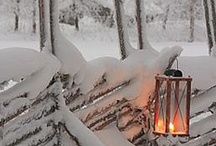 Winter / by Sanna G
