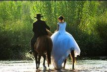 Western & Country Weddings / by Milk Maid