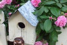 Birdhouses / by Jan Fox