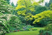 Gardens That Inspire / by Jan Fox