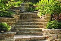 Garden Steps / by Jan Fox