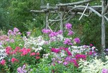 Rustic Cottage Style Gardens / by Jan Fox