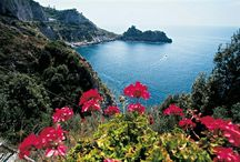 Beautiful Campania, Italy / Amalfi Coast, Capri, Ravello,  Sorrento, Naples, Mount Vesuvius, Pompeii, Ischia , Positano,  / by Rhonda