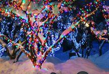 Christmas ⛄ / by Layni Trosclair