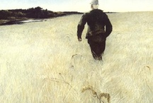 Andrew Wyeth & friends / by Larry Rice