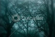Outdoors / by Cutcaster Stock Images