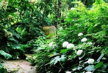 Ideas for garden retreat / ..ahh, the sweetness of space that is created in nature.  I want to make space in my own garden for people to relax, unwind and be with the natural world / by Renate Bowden