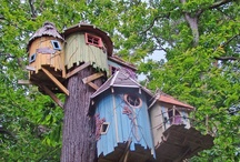 Treehouses At HOME  / by HuffPost Home