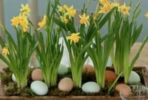 Easter at HOME / Fabulous Easter crafts, entertaining ideas and recipes. / by HuffPost Home