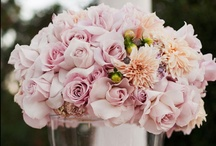 (Wedding Centerpiece Ideas) / Browse through hundreds of wedding centerpiece ideas in all shapes, colours and sizes.  There are wedding centerpieces to suit all budgets, tastes and styles! / by DIY Wedding Planning