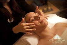 The Spa at The Beach Club / The Spa offers a comprehensive menu of spa services for enriching the body, mind and soul. We offer a wonderful selection of body treatments, massage therapies and salon services. / by Spectrum Resorts